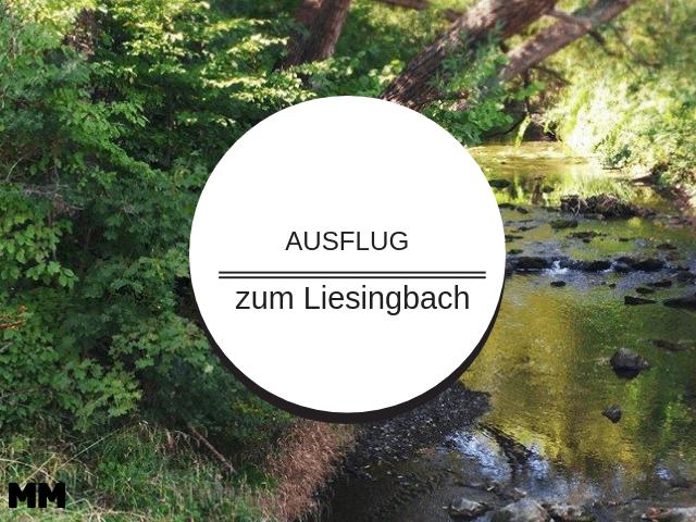 Einmal Liesingbach und zurück…