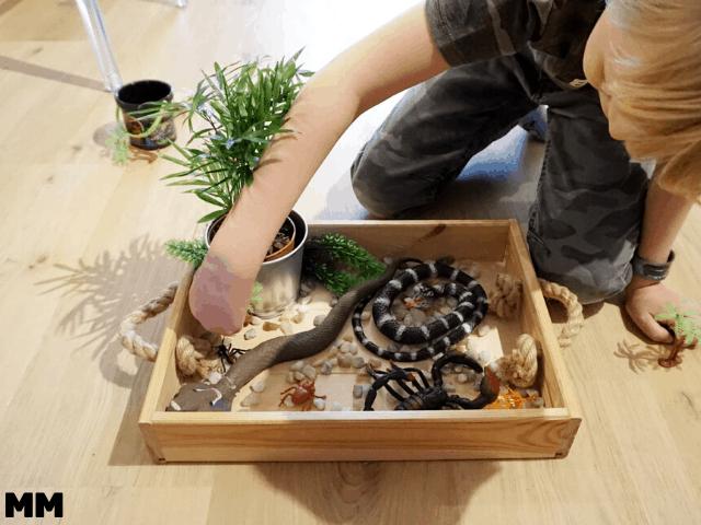 Mit den Kids ein Spiel-Terrarium bauen